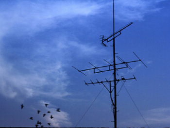 Distributed antenna system will fill the gap in wireless network connection
